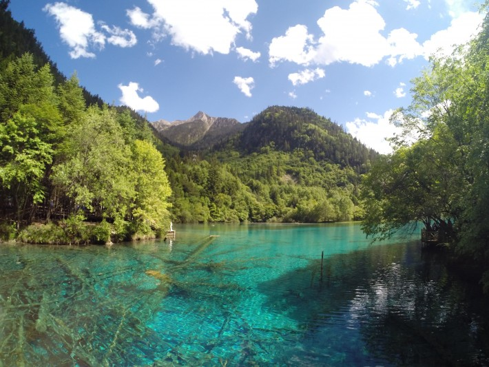 Arrow Bamboo Lake - Jiuzhaigou