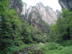 Rocks of Zhangjiajie