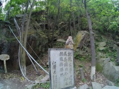 Monkey near entrance of Zhangjiajie park